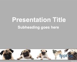 Шаблоны для презентаций животных